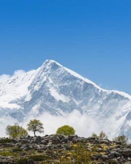 Dronagiri Bagini Glacier Trek