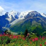 Chenab Valley of Flowers